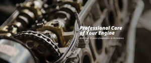 Professional care of your engine